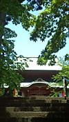 Jinyahondo